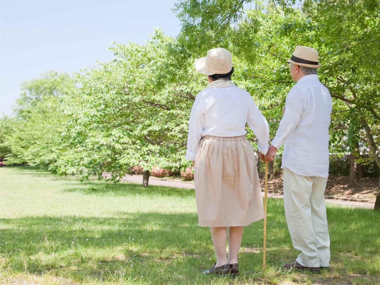 โรคกระดูกพรุนในผู้สูงอายุ