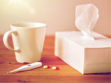 ไข้หวัดใหญ่ (Influenza)