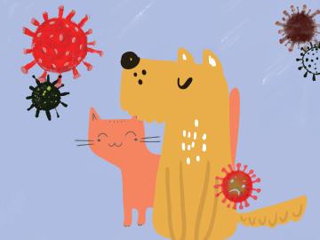 วัคซีนป้องกันโรคพิษสุนัขบ้า